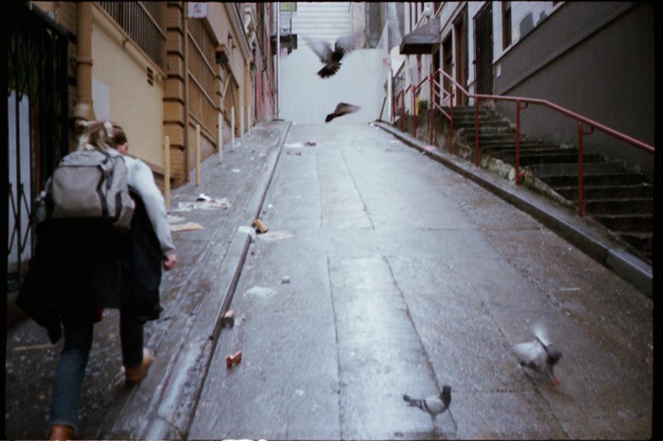 pg.22_pigeonchaser